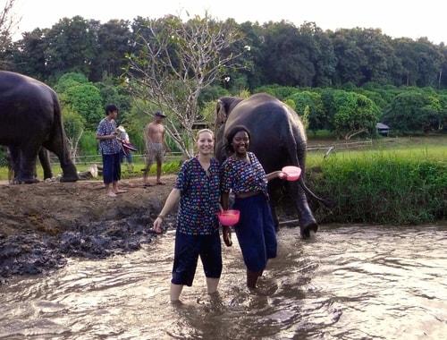 Rosie Bell travel writer portfolio - Bathing elephants in Thailand - Club Elsewhere Travel Magazine